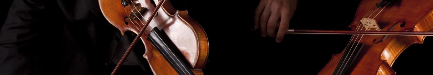 Bainbridge String Quartet