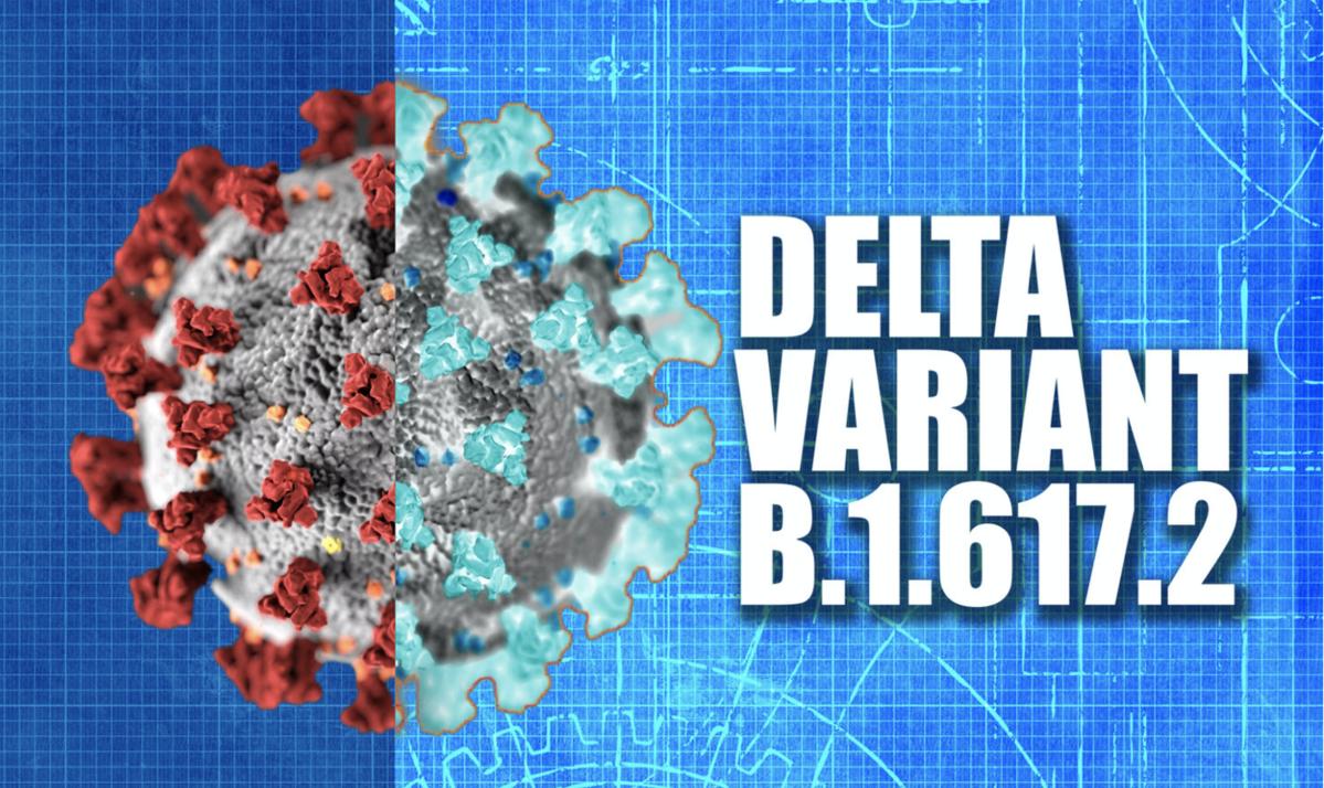 Delta Variant.png