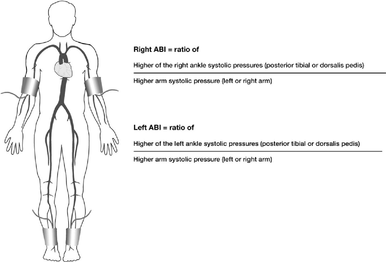 Disease Diary Peripheral Arterial Disease
