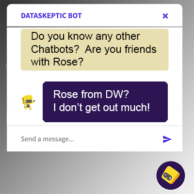 Meet Rose, a Chatbot
