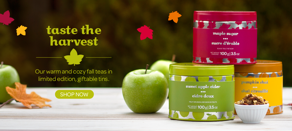 Shop the Fall Collectible Tins