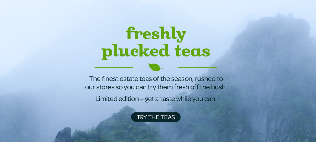 Try These Teas, Straight From The Garden To Your Cup