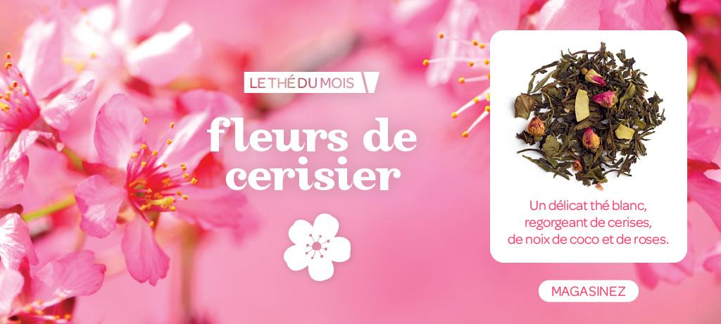 Shop Cherry Blossom