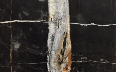 Birch Stone Of The Day