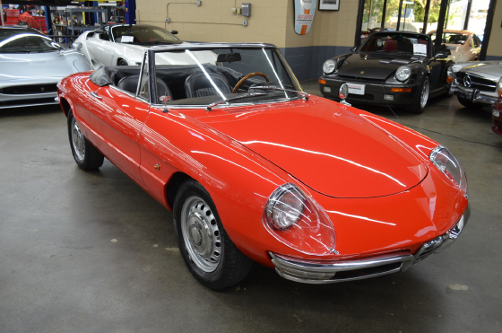 1968 Alfa Romeo Classics Spider:12 car images available