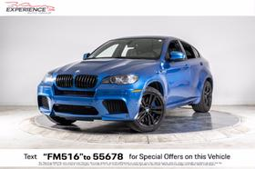 2014 BMW X6 M:24 car images available