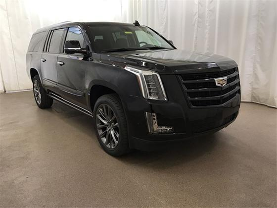2020 Cadillac Escalade ESV:24 car images available