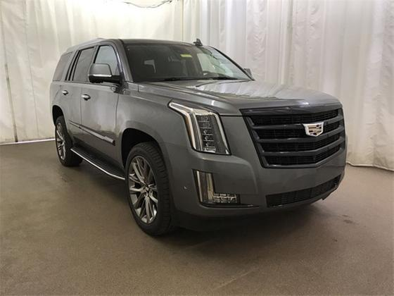 2020 Cadillac Escalade Luxury:24 car images available