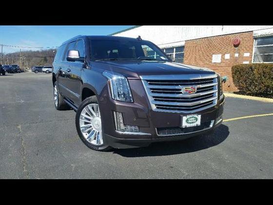 2015 Cadillac Escalade Platinum Edition:12 car images available