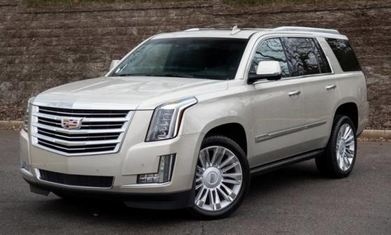 2015 Cadillac Escalade Platinum Edition:24 car images available