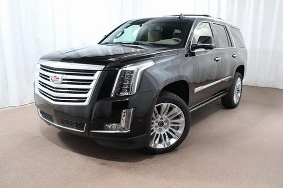 2019 Cadillac Escalade Platinum:24 car images available