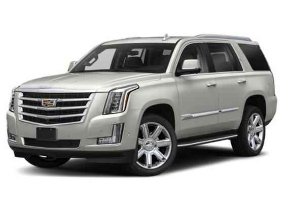 2019 Cadillac Escalade Platinum : Car has generic photo
