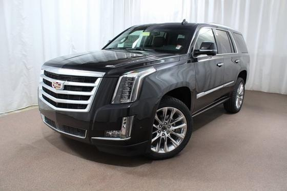 2019 Cadillac Escalade Premium:24 car images available