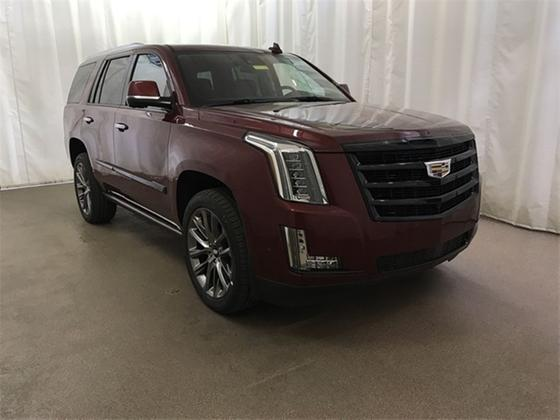 2020 Cadillac Escalade Premium:24 car images available