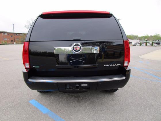 2010 Cadillac Escalade Premium