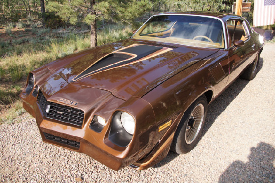 1979 Chevrolet Camaro Z28:21 car images available