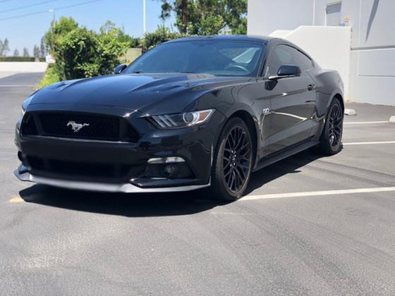 2015 Ford Mustang :19 car images available