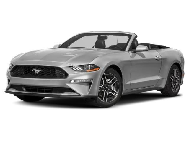 2019 Ford Mustang GT Premium : Car has generic photo