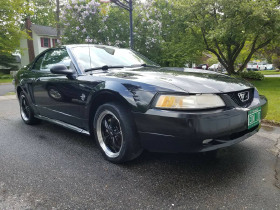 1999 Ford Mustang GT:6 car images available