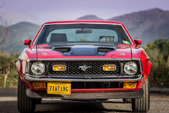 1971 Ford Mustang LX:12 car images available