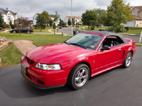 1999 Ford Mustang SVT Cobra:6 car images available