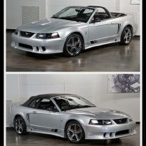 2002 Ford Mustang Saleen:24 car images available