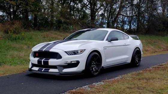 2019 Ford Mustang Shelby GT350R:24 car images available