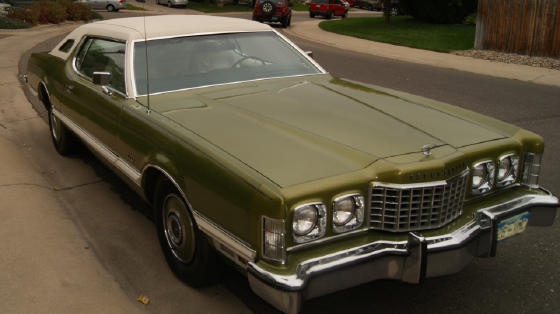 1973 Ford Thunderbird Special V8:6 car images available