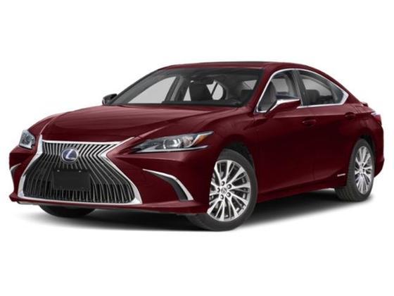 2019 Lexus ES  : Car has generic photo