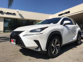 2019 Lexus NX 300:24 car images available
