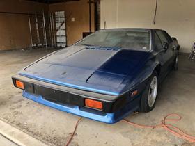1983 Lotus Esprit :24 car images available