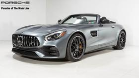 2019 Mercedes-Benz AMG GT C:22 car images available