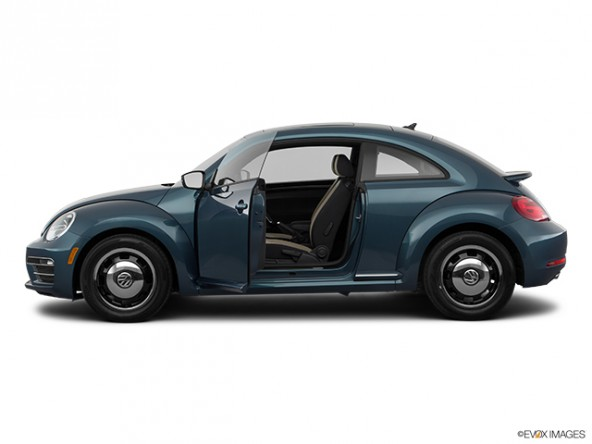 Photo of Beetle