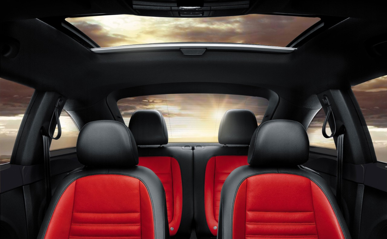 New VW Beetle Coupe Interior image 2