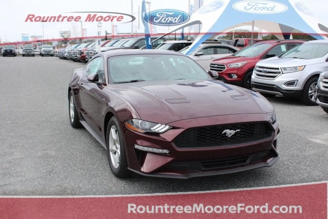 New 2018 Ford Mustang In Lake City Florida