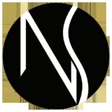 Logo Nelson Sanchez