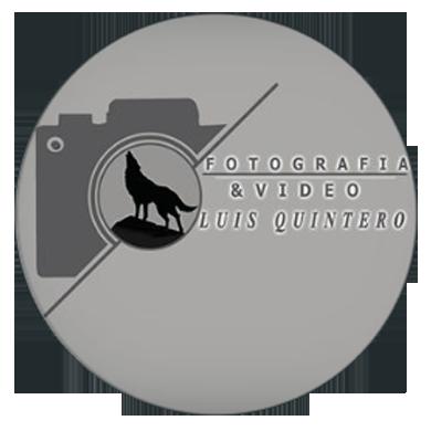 Luis Quintero Logo