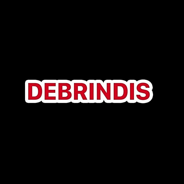 Logo Debrindis 2