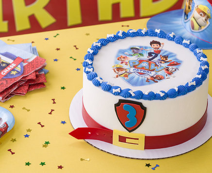 how to make a paw patrol cake how to make guppies gelatin fishbowl birthday 4965