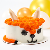 Endless Cake Designs Await With Four New Creations