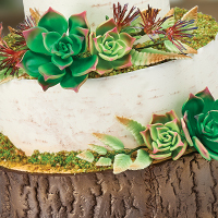 For Nature-Inspired Cakes, Our Tree Bark Impression Mat is a Must-Have