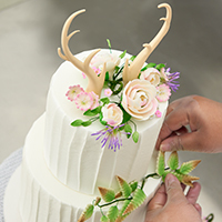 Insider Secrets for Stunning Display Cakes