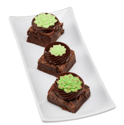 Botanical Brownies