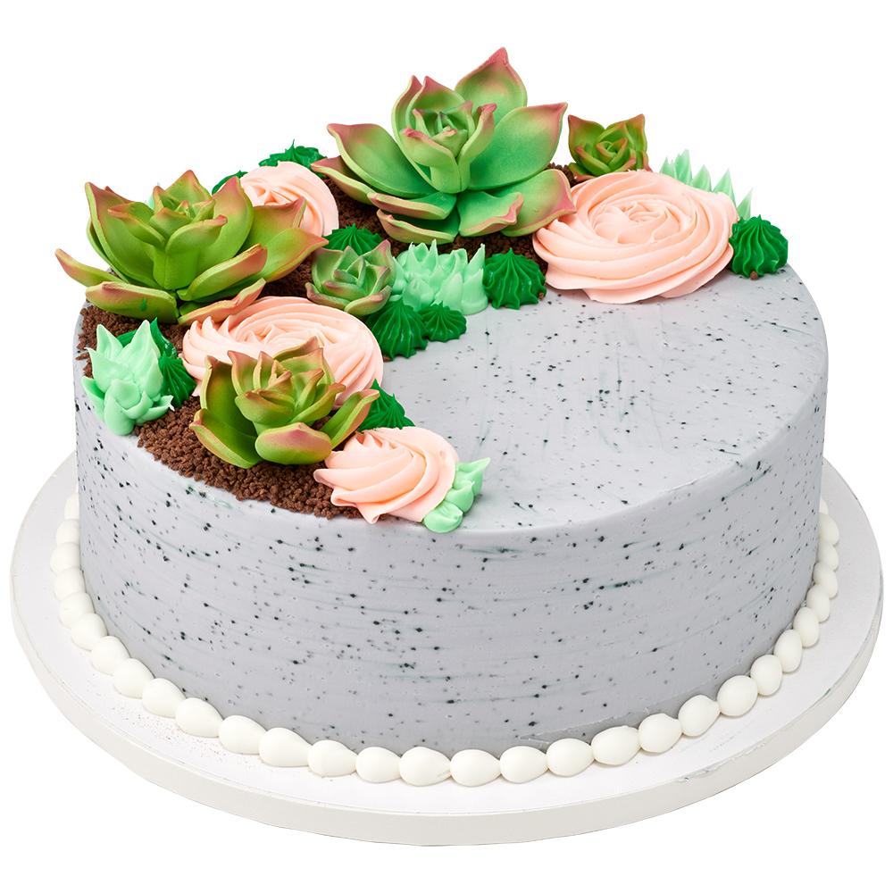 Rooftop Garden Cake