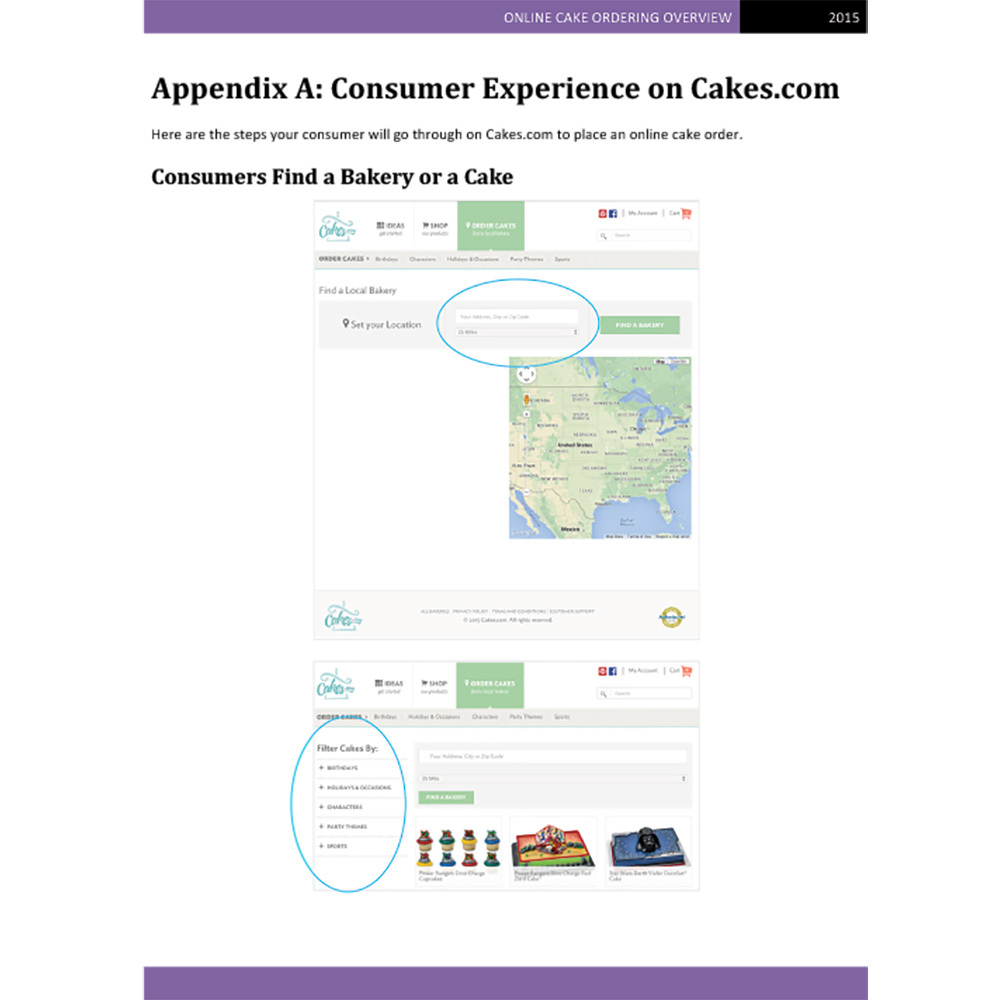 Appendix: Customer Experience