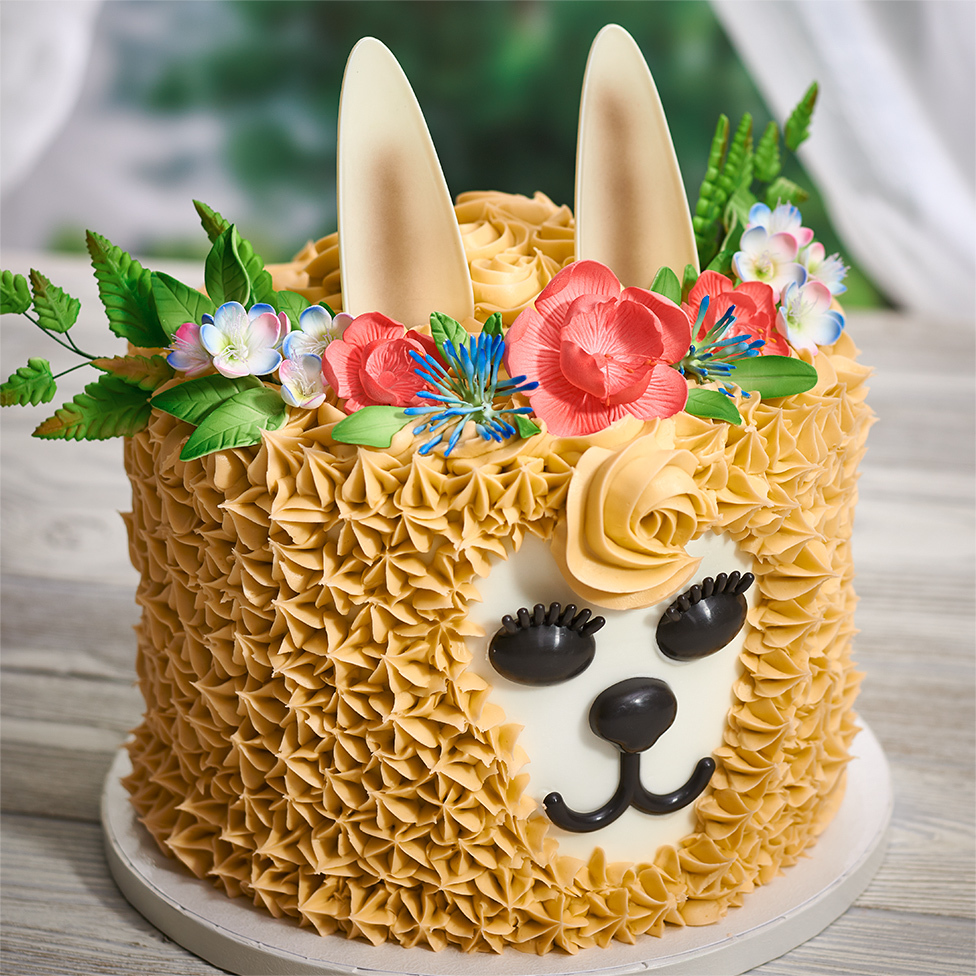 Llama cake with flowers