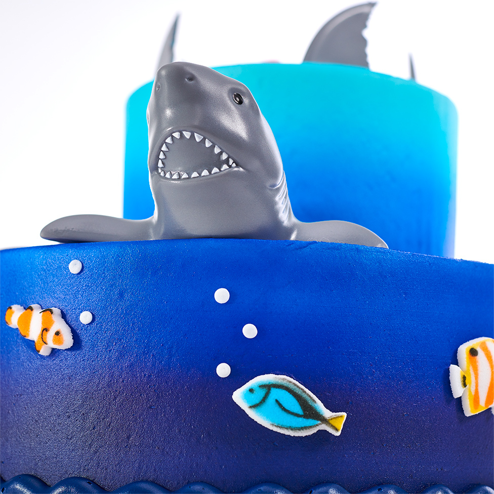 Shark, Shark Fins, Layered Cake
