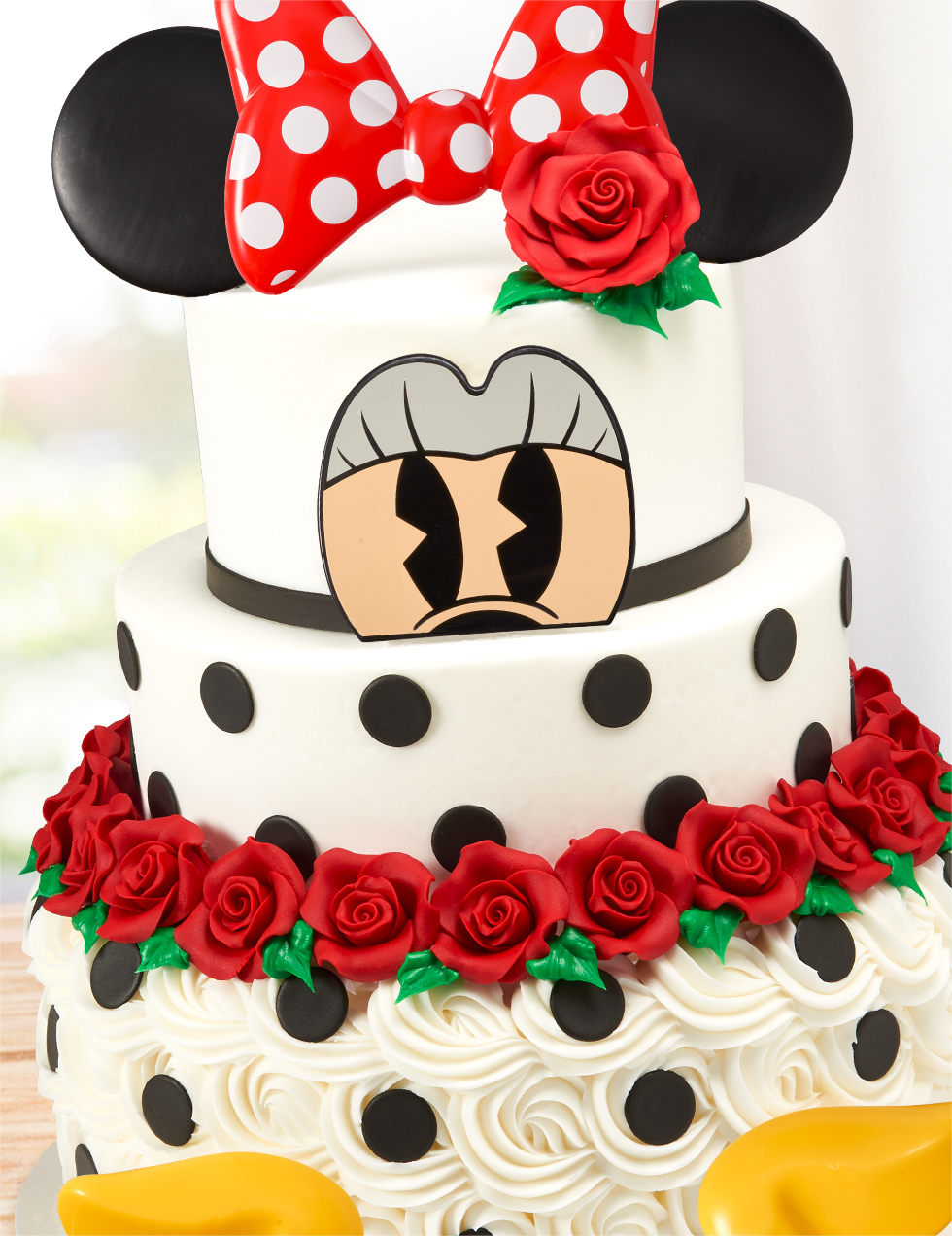 Minnie Mouse Roses Dots