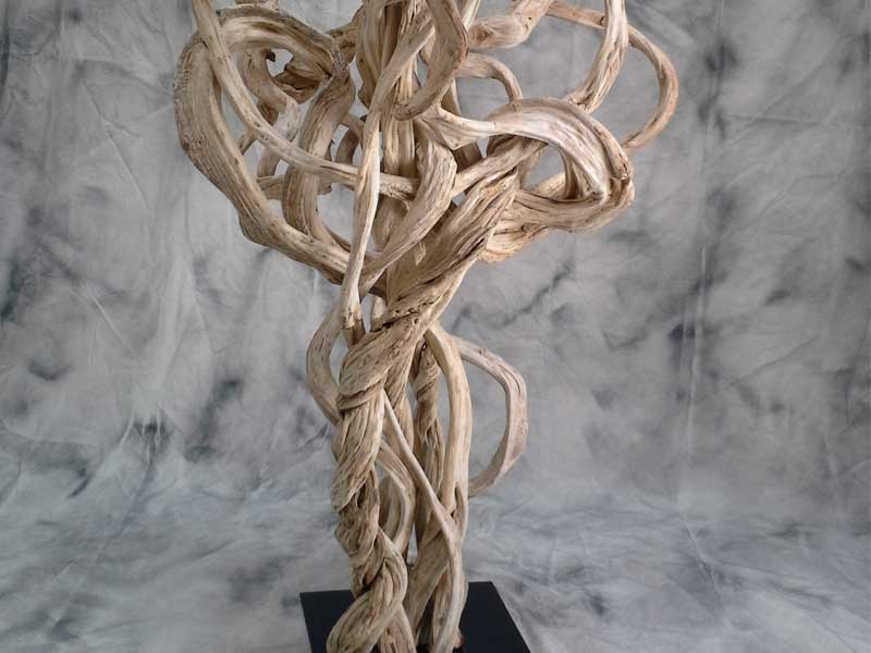 Lianas for a natural decor
