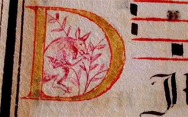 ANCIENT-KANGAROO_2792369b